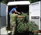 Disposing of plant material